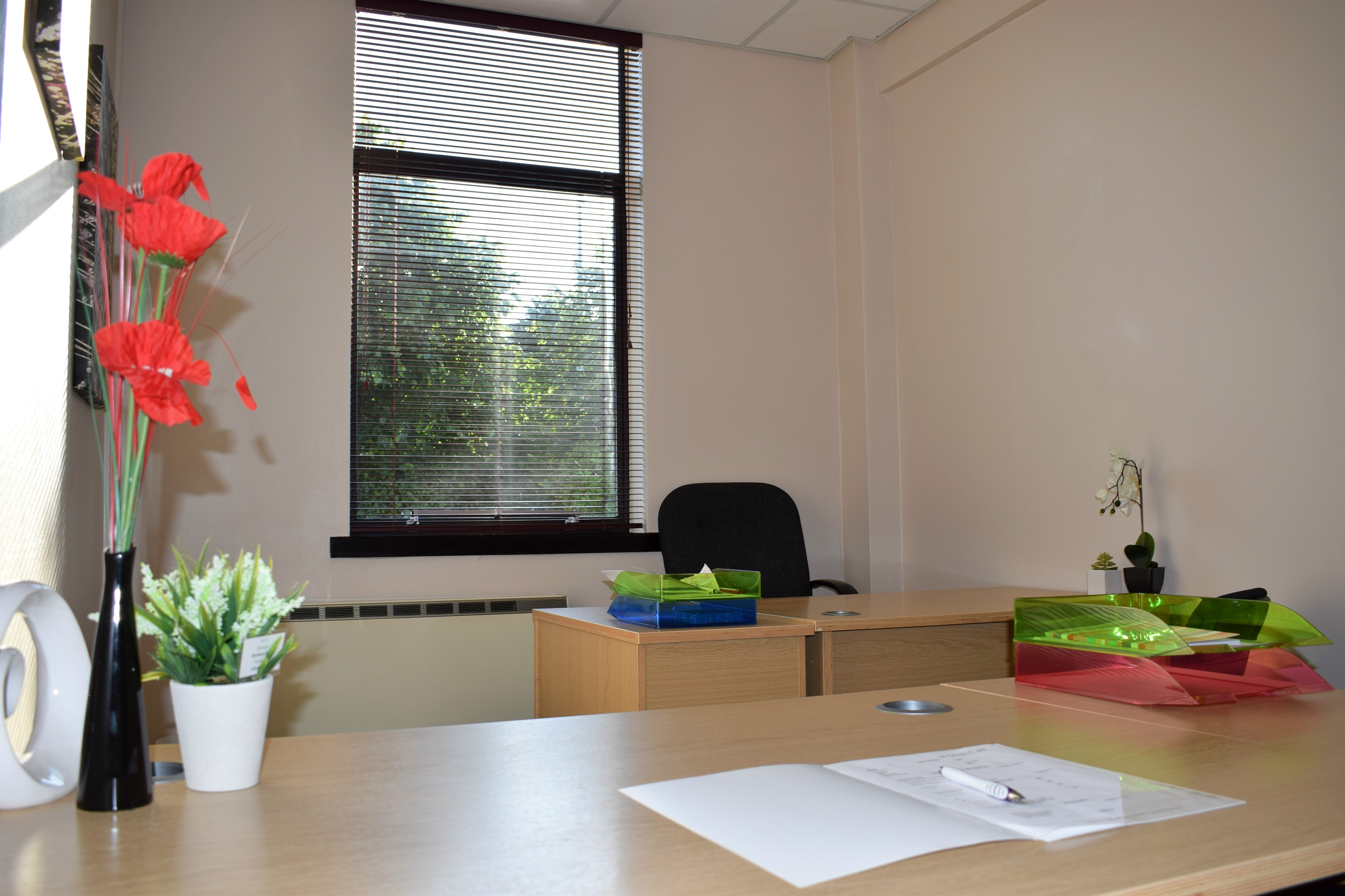 Read more about the article Shared Office Vs Private Office